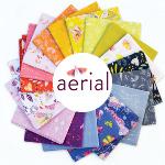 AERIFQ-WEB