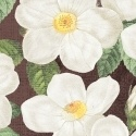 Rose pattern, small all-over