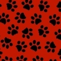 Dog paws, on red